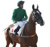 önce at yarışı. — Stok fotoğraf