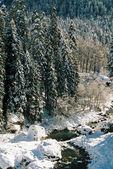 Dombai.Winter day. — Stock Photo