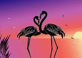 Flamingo — Stock Vector