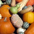 Pumpkins and gourds — Stock Photo #1941228