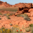 Valley of Fire Nevada — Stock Photo #2070856