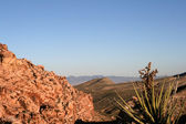 Red Rock Canyon Nevada — Stock Photo