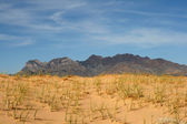 Kelso Sand dunes in Mojave Desert — Stock Photo