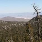 Spring Mountains Nevada — Stock Photo