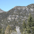 Spring Mountains Nevada — Stock Photo #2233293