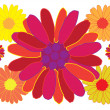 Multicolor flowers — Vector de stock #2306154