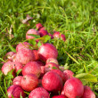 Royalty-Free Stock Photo: Red ripe apples on green grass