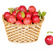 Basket of ripe red apples — Stock Photo