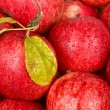 Background of red apples — Stock Photo