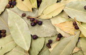 Bay leaves and black pepper — Stock Photo