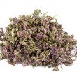 Heap of dried marjoram — Stock Photo
