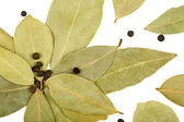 Bay leaves and black peppercorns — Stock Photo