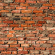 Grunge brick wall background — Stock Photo #1755271