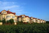 Row of similar houses over blue sky — Stock Photo