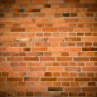 Old grunge brick wall — Foto Stock