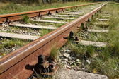 Railroad tracks — Stockfoto