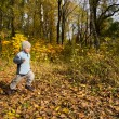 Постер, плакат: Boy running in autumn scenery