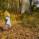 Boy running in autumn scenery — Stock Photo #2045040