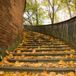 Stairs covered by leaves in autumn - Stock Photo