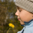 Boy smelling dandelion — Stock Photo #2045187