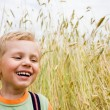 Boy laughing on wheat field — Stock Photo