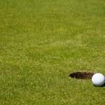 Golf ball close to hole — Stock Photo