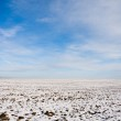 Field snow covered in winter — Stock Photo #2046431