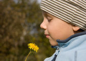 Boy smelling dandelion — Stock Photo