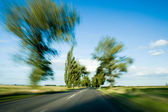 Road and trees with motion blur — Stock Photo