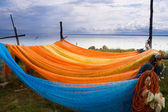 Colorful fishing nets drying — Stock Photo