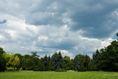 Moody sky over trees in park — Stock Photo