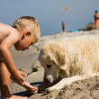 Boy play with dog on beach — Stock Photo