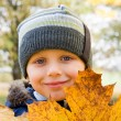 Small boy and yellow leaves — Stock Photo