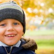 Постер, плакат: Boy smiling in autumn scenery