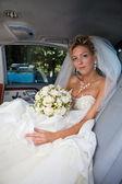Before wedding — Stock Photo