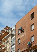Builders — Stockfoto