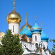 Cupola of the cathedral (Sergiev Posad) - Stock Photo