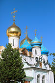 Cupola of the cathedral (Sergiev Posad) — Stock Photo