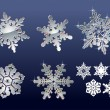 Stock Vector: Real snowflakes