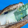 Mouth, euro, one — Stock Photo