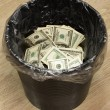 Bucket, dollars, two — Stock Photo #1736088
