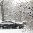 Stock Photo: Car,snowfallI,two