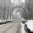 Royalty-Free Stock Photo: Street,snowfallI,one