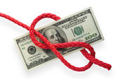 Money and knot 02 — Stock Photo