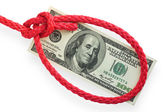 Money and knot 03 — Stock Photo