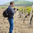 Photographer and vineyard - Stock Photo