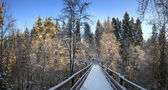 Snow covered footbridge. Panorama. — Stock Photo