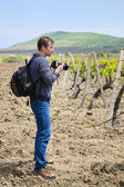 Photographer and vineyard — Stock Photo