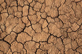 Cracks in a brown ground — Stock Photo