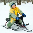 Boy with a sledge — Stock Photo #1812285
